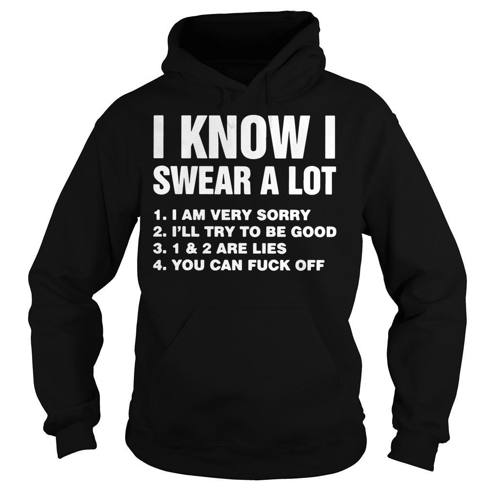 I know I swear a lot I am very sorry I'll try to be good hoodie