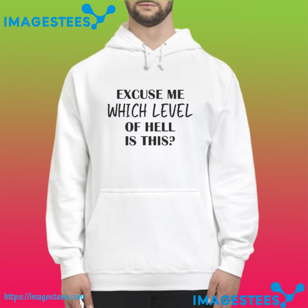 Excuse Me Which Level Of Hell Is This Gift T-Shirt hoodie